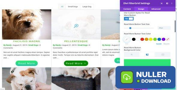 Divi FilterGrid v2.1.1 - Create a Beautiful Grid Layout of any Post Type